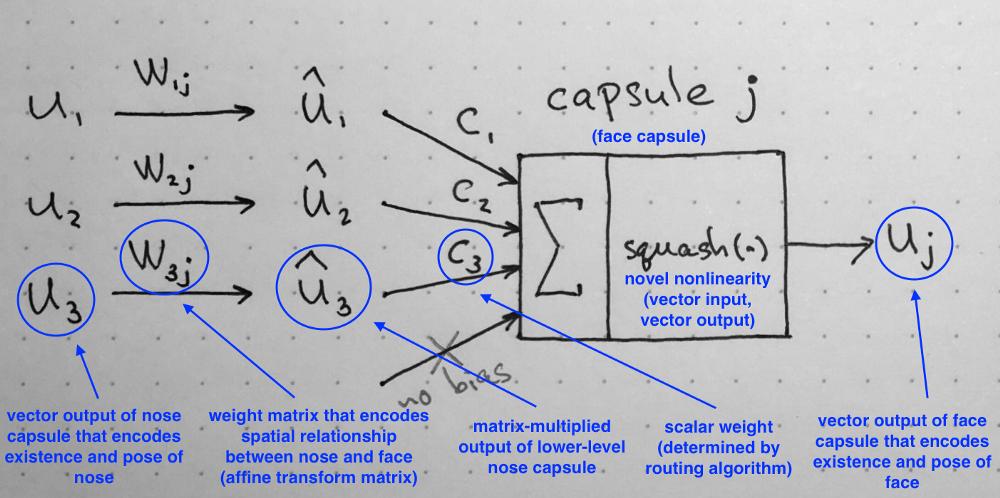 capsules-drawing-2